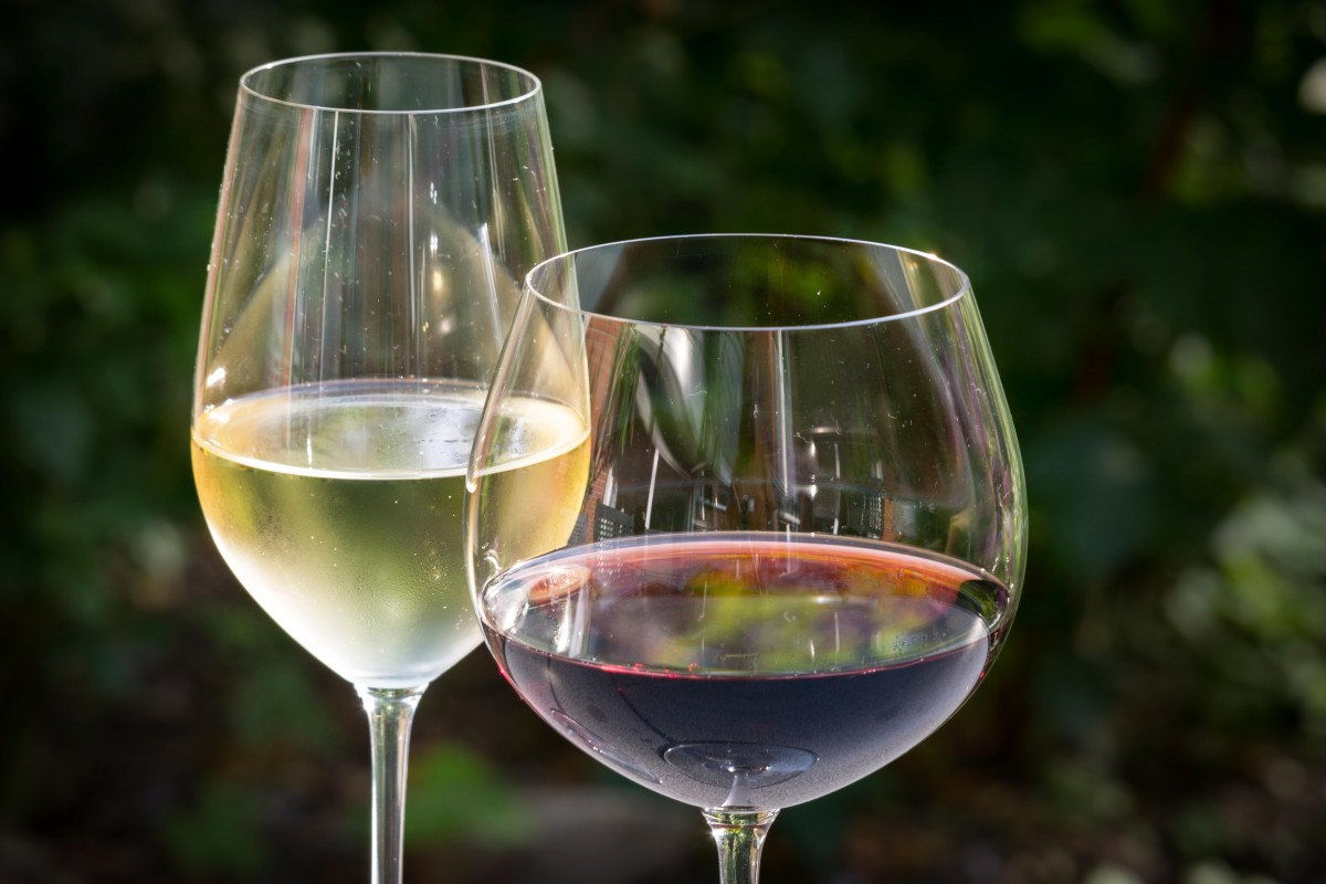 white_wine_red_wine_wine_glasses_wine_glasses_mirroring_beverages_benefit_from-872299