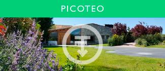 bot_menu_picoteo